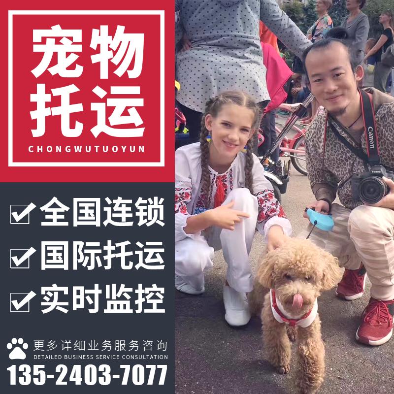 上海国际宠物托运服务全国空运宠物寄送托运证明手续代办入境清关