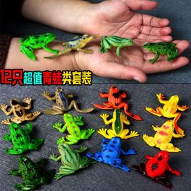 仿真可爱青蛙模型玩具林蛙蟾蜍两栖动物实心塑胶套装儿童认知礼物