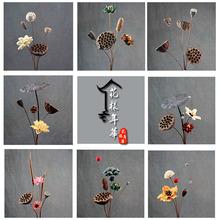 禅意干花花束组合莲蓬松果荷花真花装饰摆件小清新套装拍摄道具