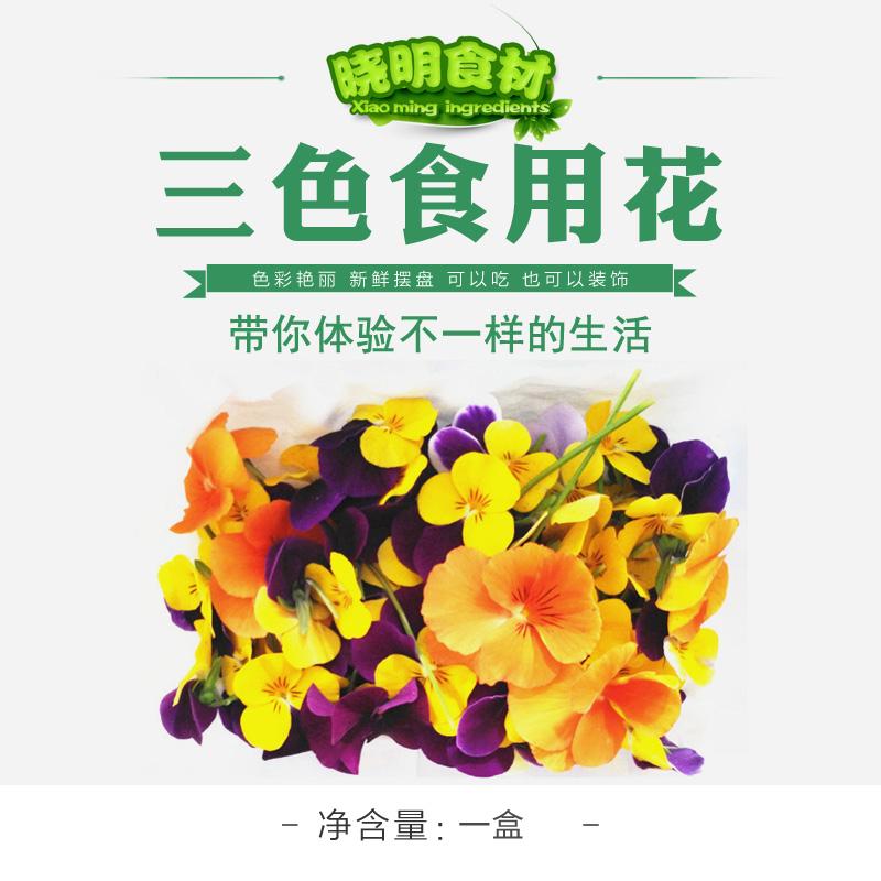 新鲜三色堇食用花40朵西餐装饰花