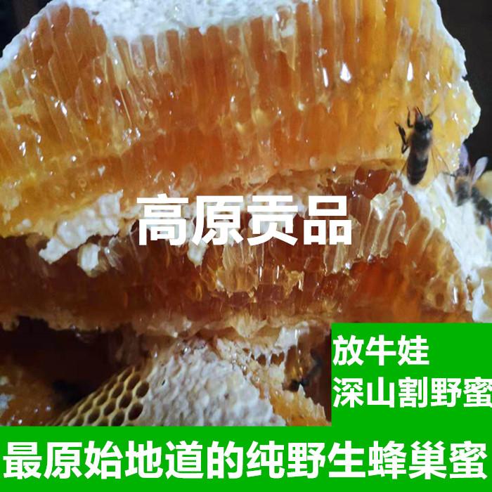 高原深山纯野生蜂巢蜜500克包邮野生纯蜂蜜百花蜜山野天然野蜂蜜(非品牌)