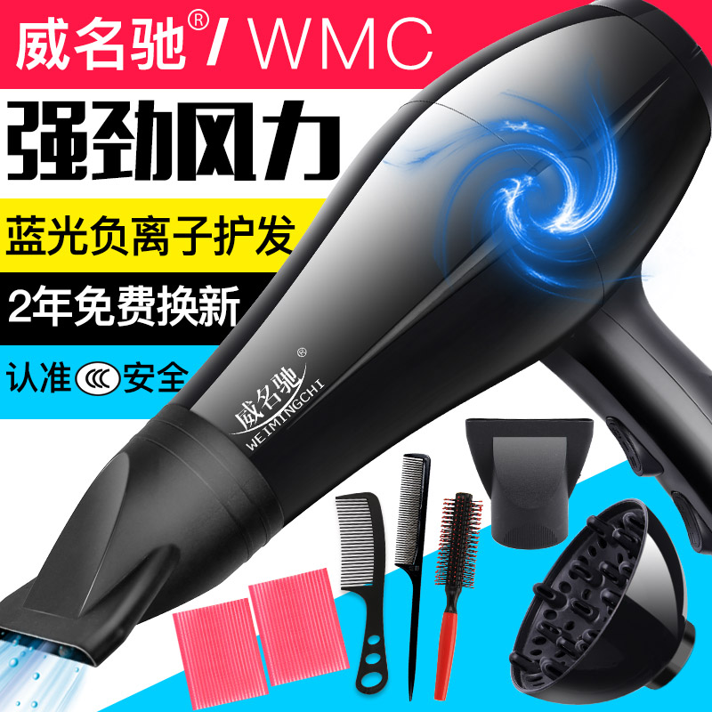Wal Chi home-made high-power hair shop mechanism safety thermostat anion hair blue hair dryer drum