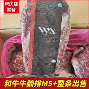 澳洲和牛M5牛腩排日式烧肉韩式500g 烤肉供应商整条出售