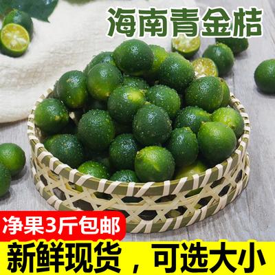 海南小金桔新鲜青金桔酸青橘小柠檬3斤包邮产地发正宗小青桔青绿