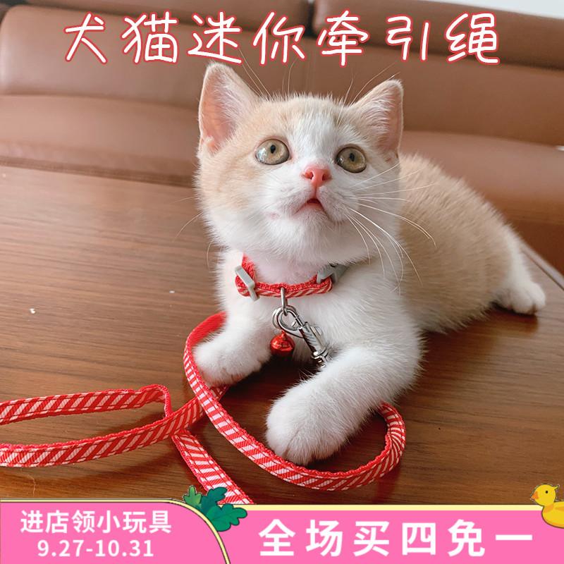 幼猫咪幼犬牵引绳套脖铃铛小型猫绳12-03新券