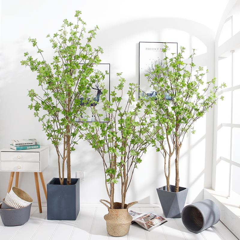 北欧ins风仿真植物装饰日本吊钟树