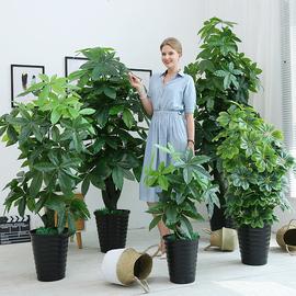 假花仿真发财树装饰植物室内假盆栽客厅花大型落地树绿植塑料盆景图片