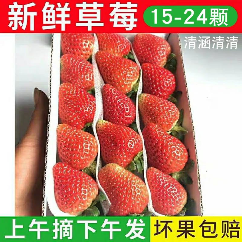 1盒现摘新鲜草莓奶茶蛋糕店烘焙商用小草莓时令水果四季草莓包邮