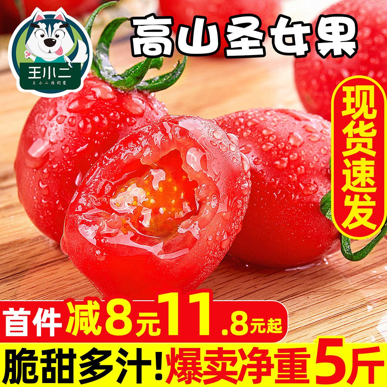 山东圣女果新鲜水果5斤自然熟西红柿子千禧果生吃小番茄蔬菜包邮