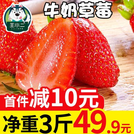 王小二 牛奶草莓新鲜水果当季包邮奶油草莓大应季批发3斤