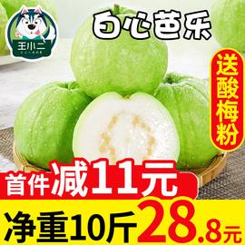 王小二 白心芭乐果新鲜包邮水果当季白肉番石榴甜整箱应季10斤
