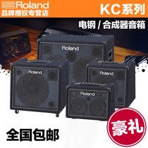 Roland Roland KC-80 KC-220 KC-400 KC-600 KC-990 Keyboard Listening speaker