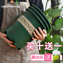 Gallon Flower Pot Plastic Household 1/2/3/5 Thickened Clean Warehouse Large Balcony Planting Pot Indoor Green Raw Wood Flower Pot