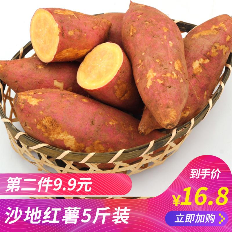 湖北沙地蜜薯新鲜红薯山芋洋芋番薯地瓜烤地瓜烤红薯5斤包邮