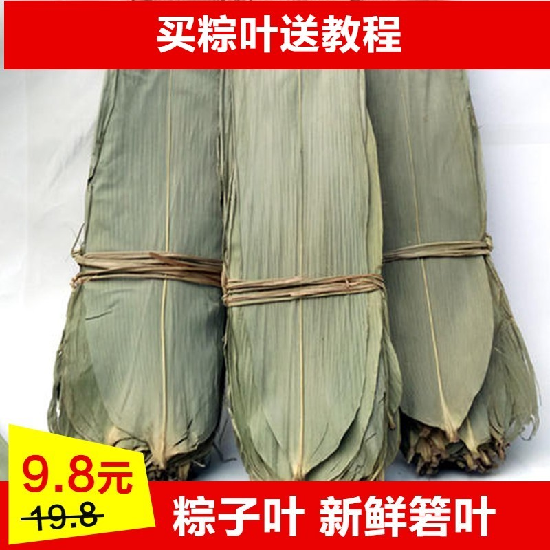 Dried rice dumpling leaves, natural roasted rice dumpling leaves, 100 pieces of fresh rice dumpling leaves