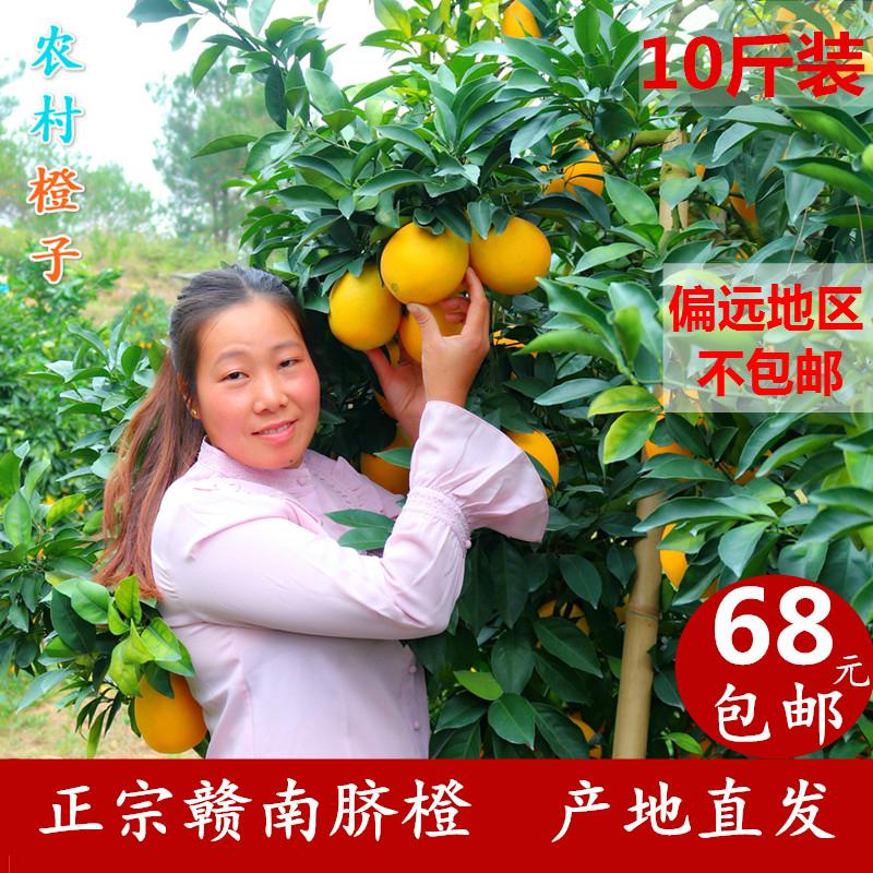 农村橙子特产店 正宗赣南脐橙10斤 包邮 阿红家的特产