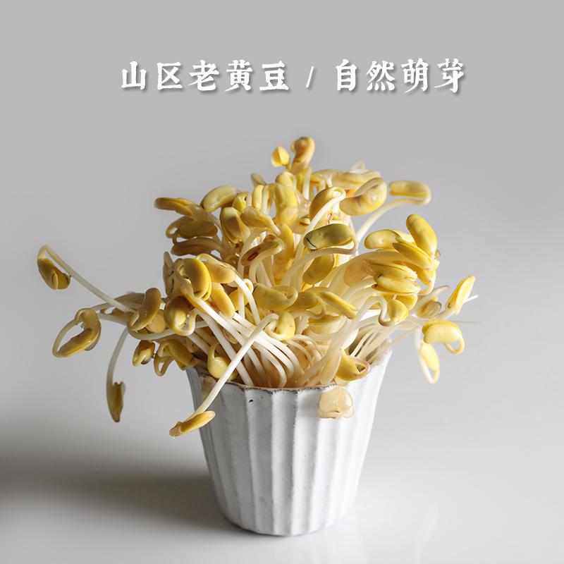 【非转基因大豆】陕北老品种黄豆 肾形黄豆土黄豆打豆浆生豆芽4斤