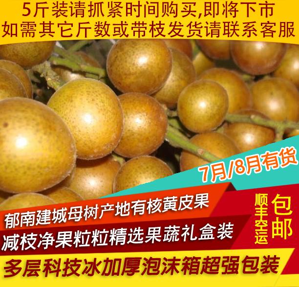 广东郁南建城本土山黄皮果顺丰内包邮孕妇新鲜时令水果买5斤装