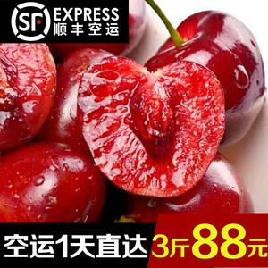 领3元券购买现摘现发大樱桃3斤顺丰包邮 四川红灯车厘子中大果新鲜水果樱桃