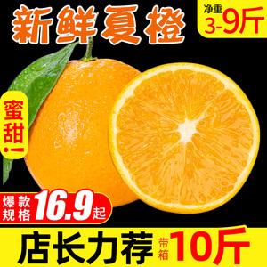 新鲜甜脐橙9斤夏橙3斤5斤手剥橙应季水果批发包邮湖南甜橙子10
