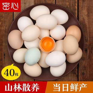 土鸡蛋农家散养新鲜柴鸡蛋林地散养全国多地包邮40枚草鸡蛋笨鸡蛋