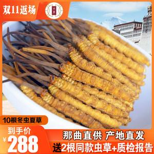 西藏那曲干正品头期5根冬虫夏草