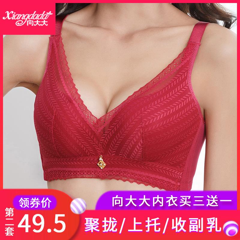 向大大内衣套装女官方正品文胸聚拢无钢圈性感蕾丝小胸收副乳上托