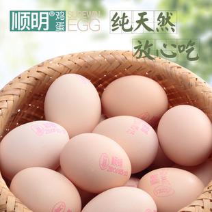 順明雞蛋40枚 新鮮雞蛋 無公害雞蛋 供港澳雞蛋 包郵