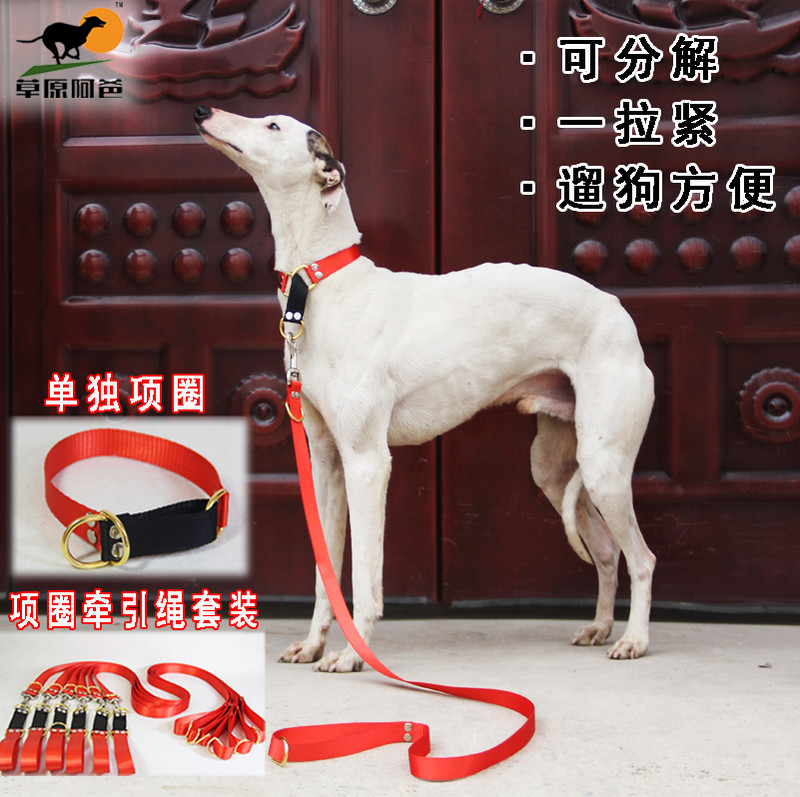 Dog neck collar traction rope dog neck cover walking dog rope Greyhound whimpet Afghan collar
