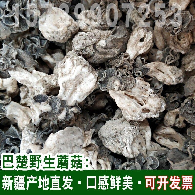 新货巴楚菇100g 新疆巴楚野生蘑菇干食用菌香菇胡杨林皱柄羊肚菌.