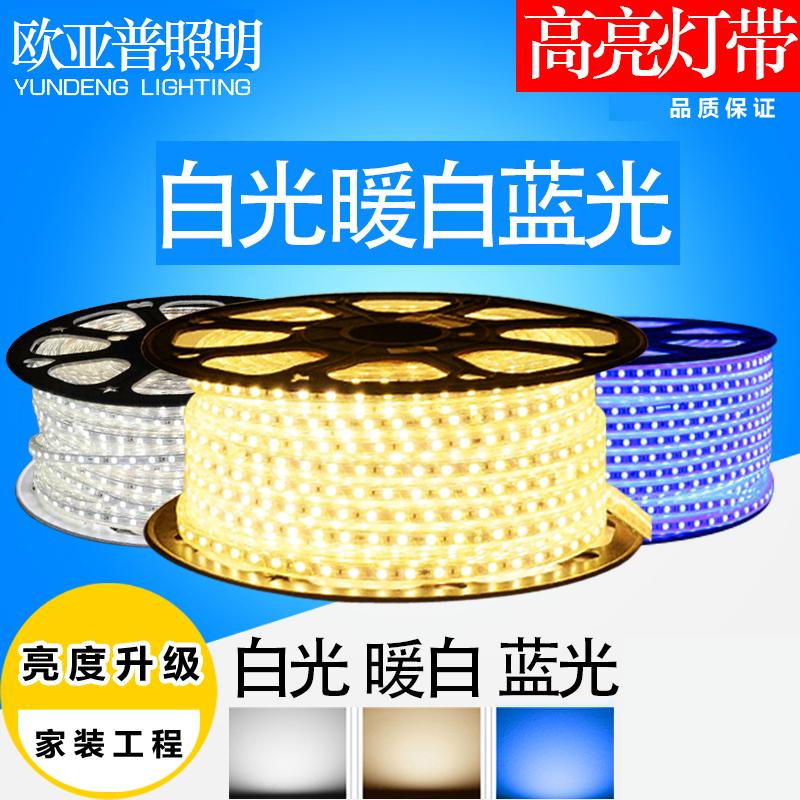 限10000张券led灯带双排线灯霓虹灯长条客厅吊顶灯槽超亮光带220V装饰灯条扁
