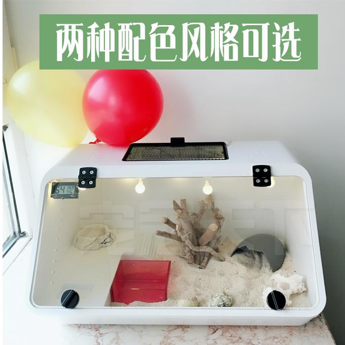 包邮寄居蟹活体套装另类宠物饲养盒亚克力缸水陆两栖鱼缸爬虫箱