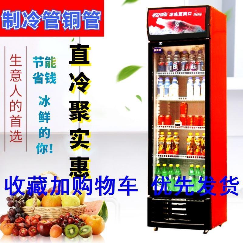 冰柜冷柜水柜家用展示柜立式饮料冷藏柜保鲜柜便利店冰箱啤酒柜