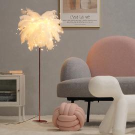 北欧ins风羽毛落地灯少女客厅卧室沙发边床头网红轻奢led立式台灯图片