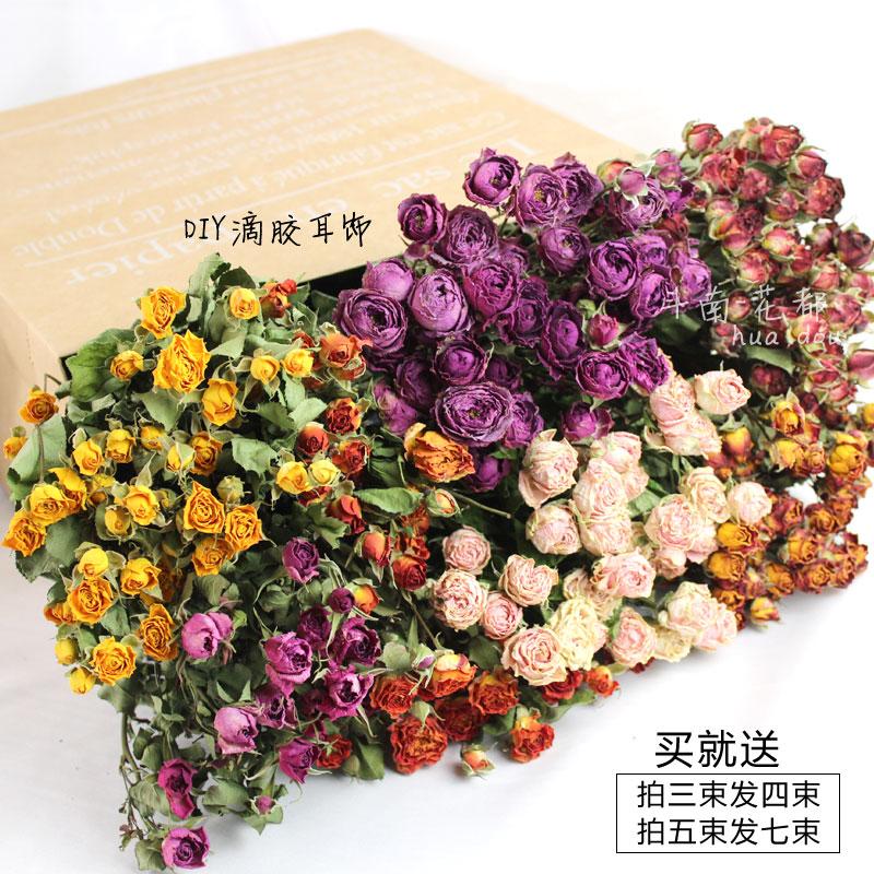 蔷薇泡泡干花 DIY滴胶耳饰制作 家居店铺软装花材