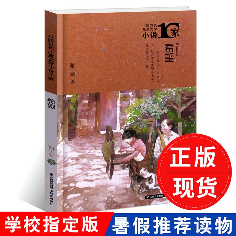 2018暑假读一本好书 看望 梅子涵著中国当代儿童文学小说10家 学校老师推荐6-7-8-9-10-12岁青少年三四五六年级小学生课外阅读书籍