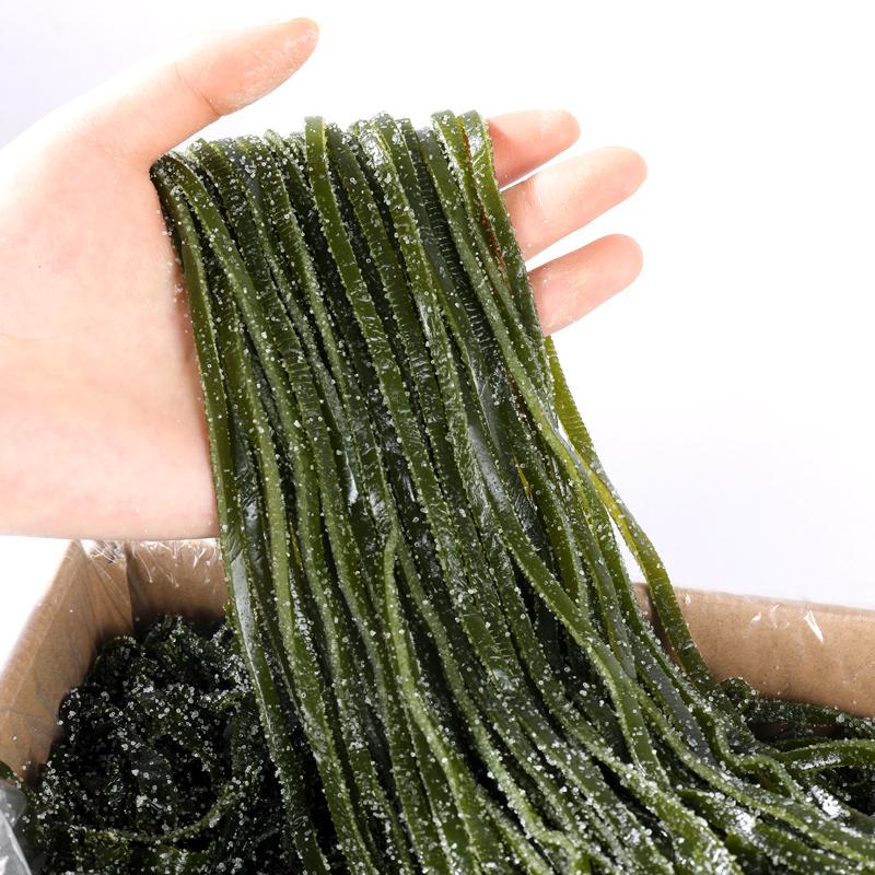 荣成5斤海带丝盐渍野生新鲜非干货特出口级厚散装昆布海带丝整箱