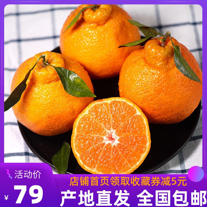 四川不知火丑橘9斤新鲜水果耙耙柑冰糖蜜甜丑柑丑八怪橘子蜜桔子