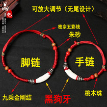 Jing Xu Black dog tooth this year red rope foot chain bracelet male and female couple foot chain baby baby child bracelet