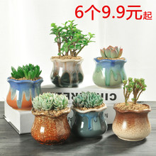 Multi-meat Flower Pot Ceramic Warehouse Cleaning Simple Indoor Large Special Price Household Simple Meat Plastic Creative Crude Pottery Small Pot