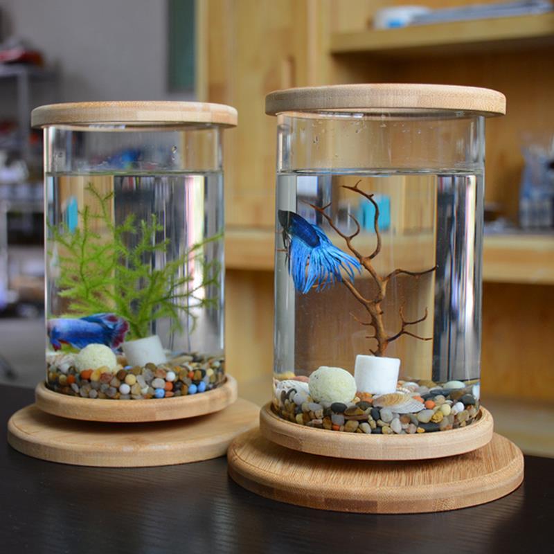 创意斗鱼专用缸迷你小型造景生态瓶家用客厅办公室桌面鱼缸水族箱
