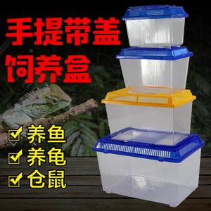 塑料小金鱼缸手提式宠物饲养盒金鱼热带鱼巴西龟草龟乌龟缸带盖款