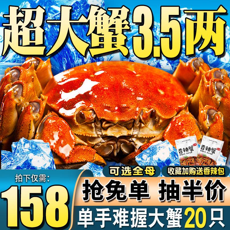 大闸蟹鲜活现货阳澄湖镇六月黄全母公蟹清水河蟹海鲜特大水产螃蟹