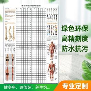 体态评估表墙贴健身房体测表瑜伽馆私教身体姿势网格图体位体姿图图片