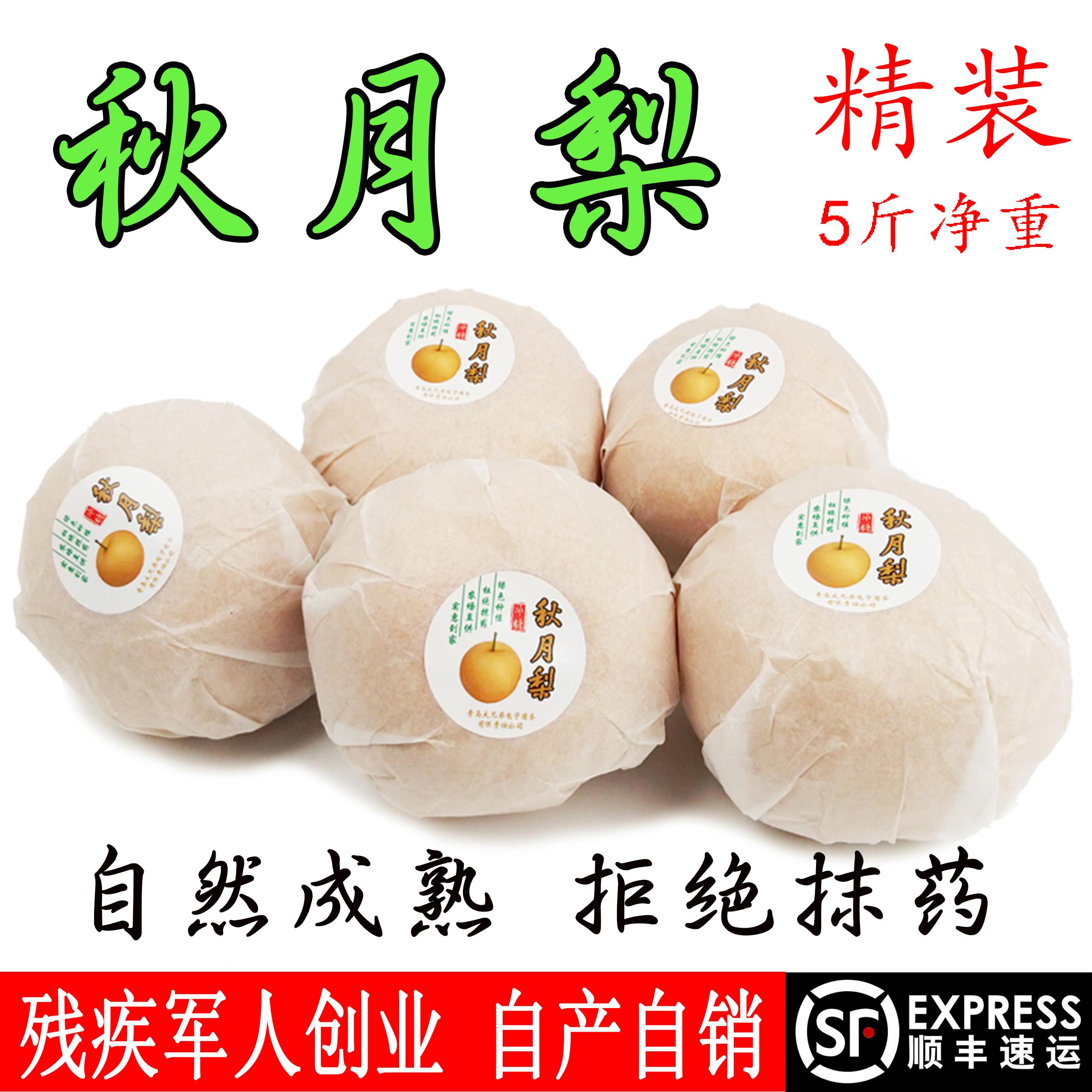 秋月梨冰糖蜜梨凰新鲜水果5斤包邮非丰水砀山雪皇冠酥软山东特产