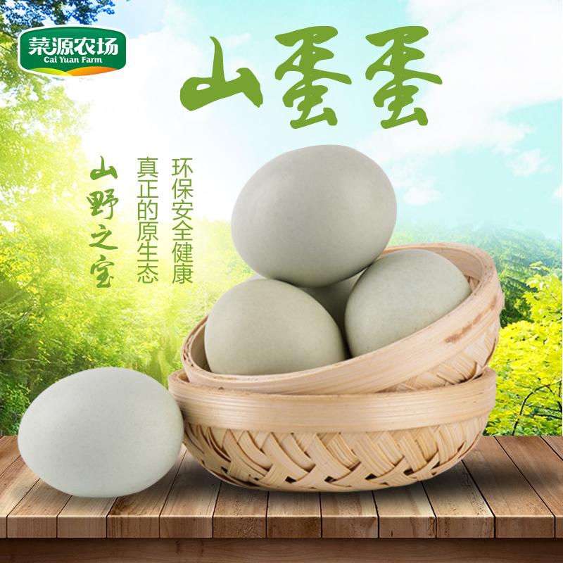 【菜源农场】正宗农家土鸡蛋新鲜散养青壳鸡蛋笨鸡蛋草鸡蛋20枚