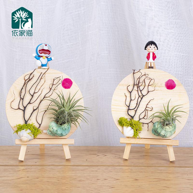 Q-海日东升空气凤梨懒人无土植物盆栽叮当樱桃小丸子精灵微景观包