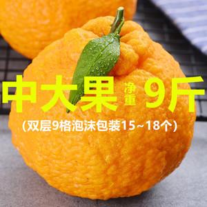 【不知火丑橘中大果净重9斤】橘子