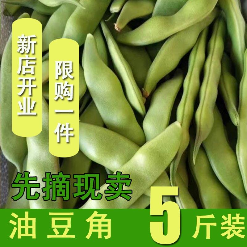 新鲜东北油豆角5斤装 农家新鲜蔬菜特产九月青开锅烂现摘自种农产