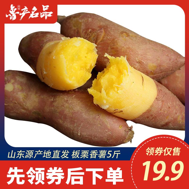 【鲁产名品】山东板栗红薯香薯5斤新鲜农家自种蜜薯地瓜番薯山芋